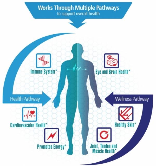 Astaxanthin Health Pathways